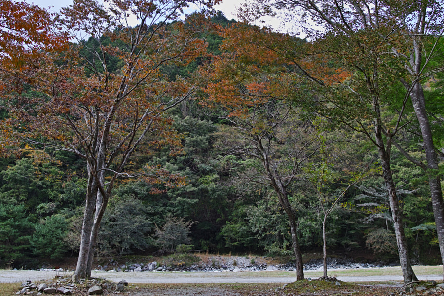 500px.comのfotois youさんによるTanzawa Japan early autumn