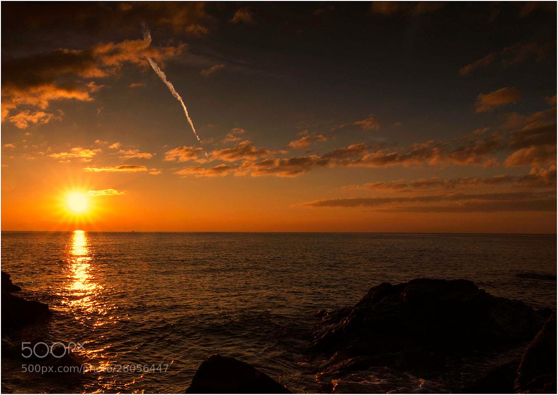Photograph sunbeams by Stefano Crea on 500px