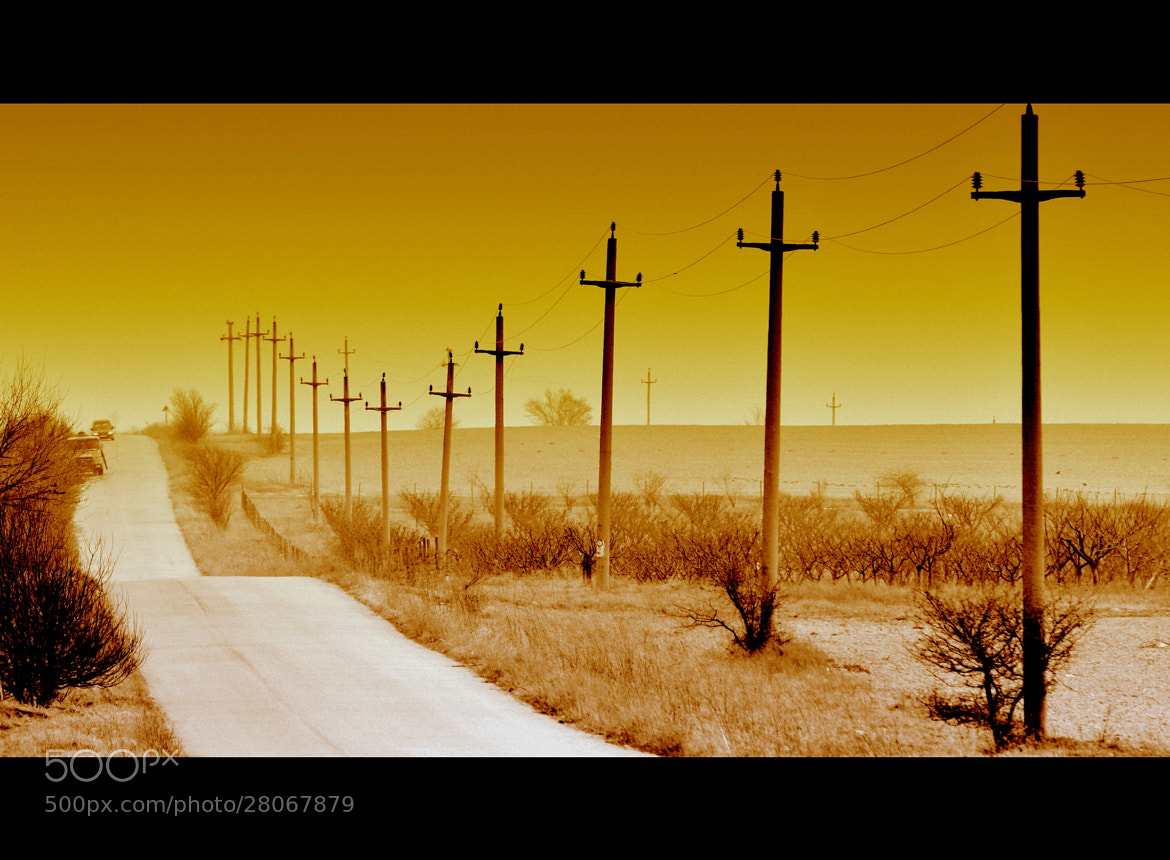 Photograph Life in SEPIA by Claudia Gadea on 500px