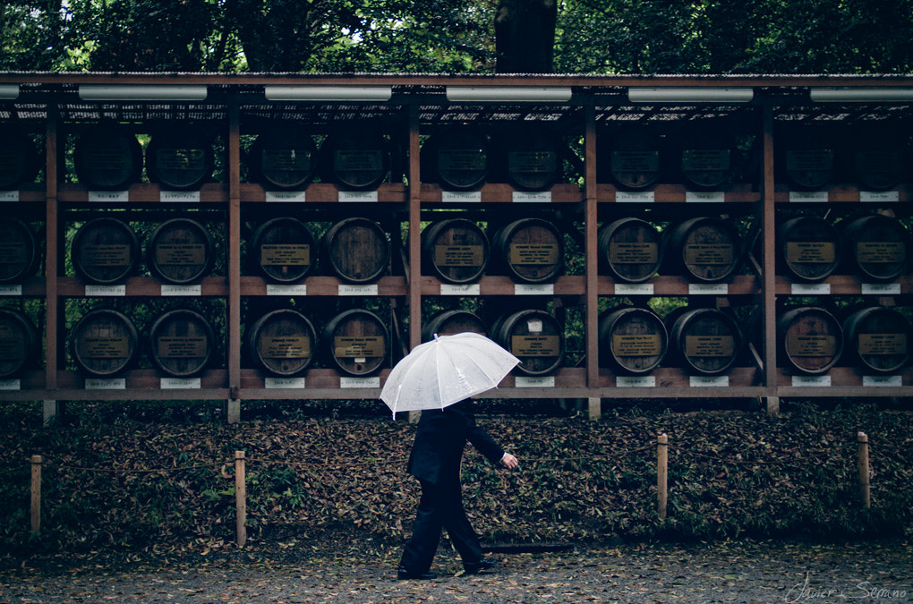 Photograph Umbrella series (number 1) by Javier Serrano on 500px
