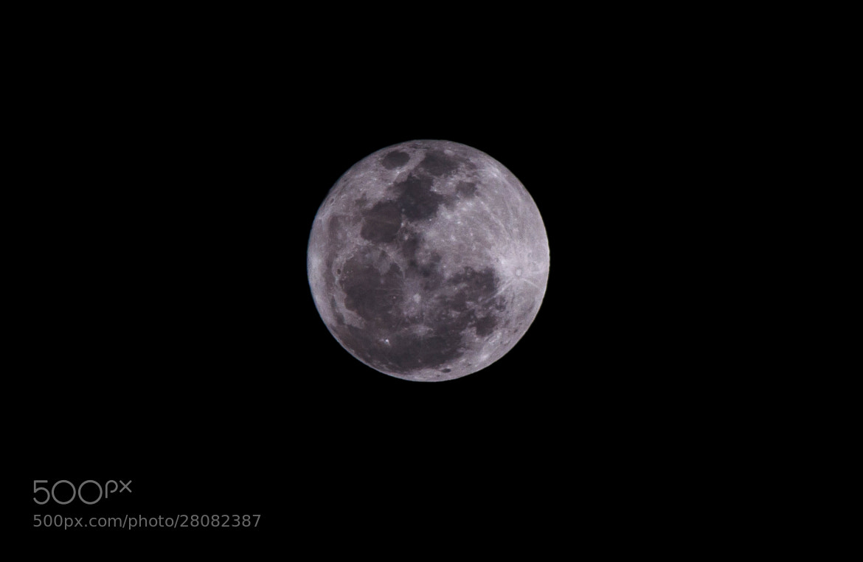 Photograph Full Moon by Subhash Radhakrishnan on 500px
