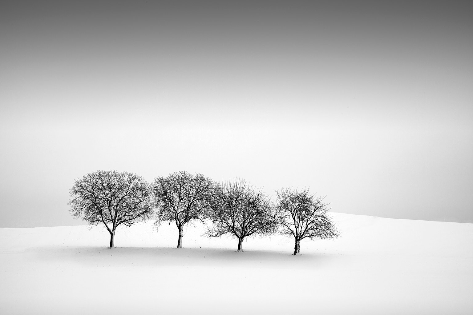 Photograph Four in a row by Dominique Dubied on 500px