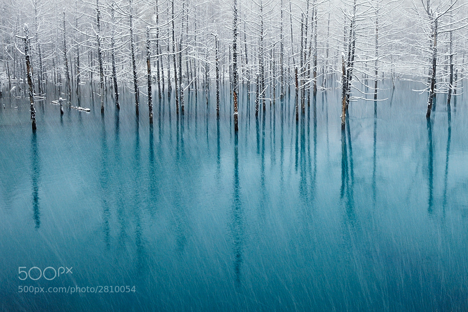 Photograph Blue Pond & First  Snow by Kent Shiraishi on 500px
