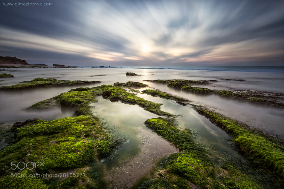Photograph Tidal Convergence by Dima Zlotnyk on 500px