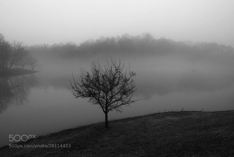 Photograph Reservoir Fog by Heather D Conley on 500px