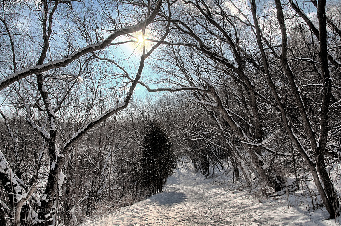 Photograph Snowy Trail #3 by Joseph Qiu on 500px