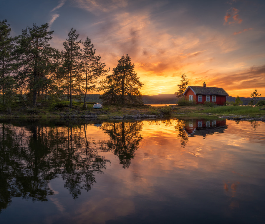 Return to Yggdrasill by Ole Henrik Skjelstad on 500px.com