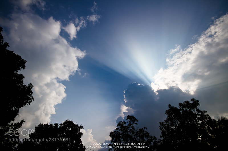 Photograph Sun Ray! by Mardy Photography on 500px