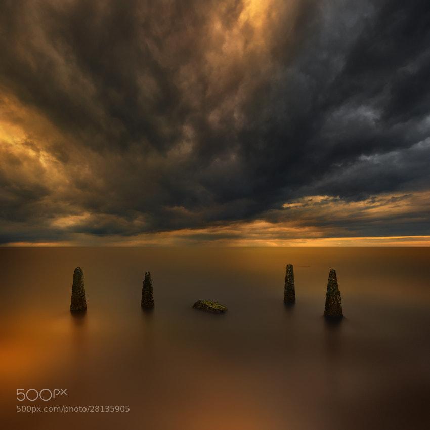 Photograph Baltic Tusks... by Pawel Kucharski on 500px