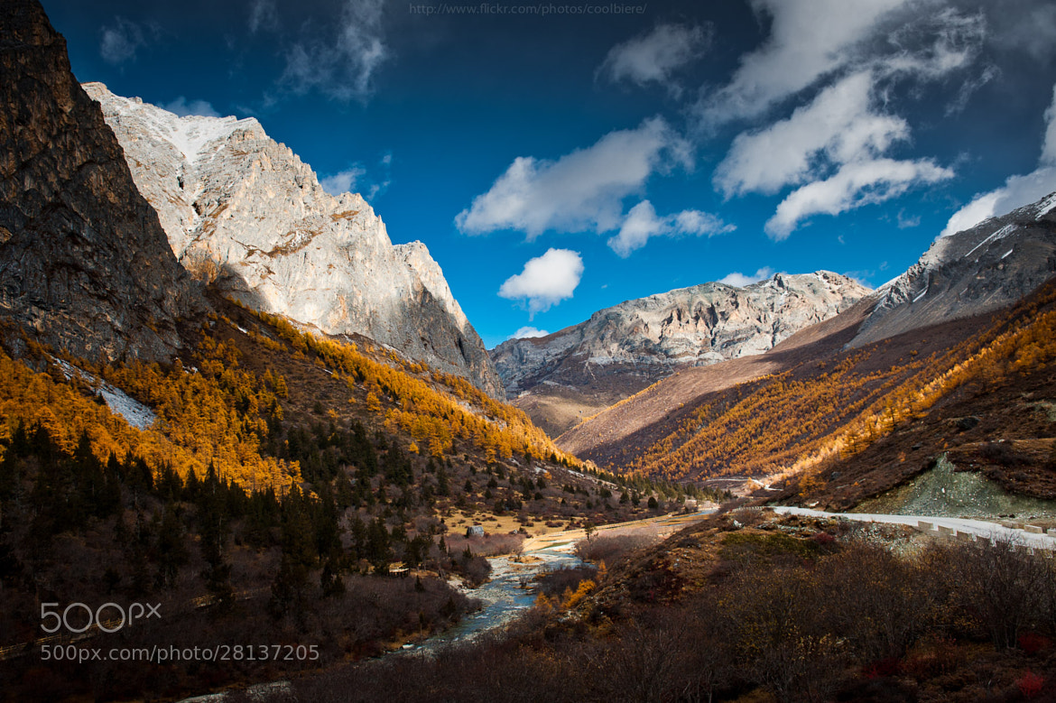 Photograph Autumn in China by Coolbiere. A. on 500px
