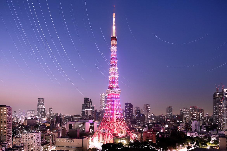 Photograph 東京タワー by hirosima munetaka on 500px