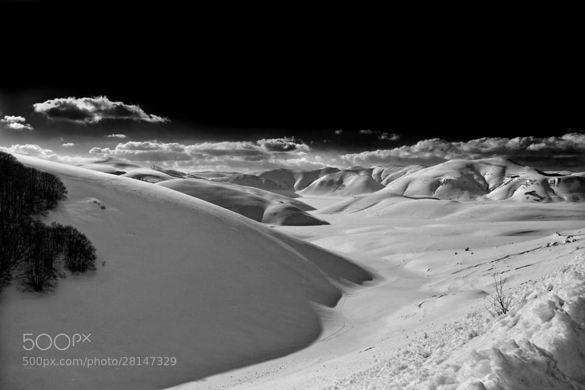 Photograph Snow Landscape by mario pignotti on 500px