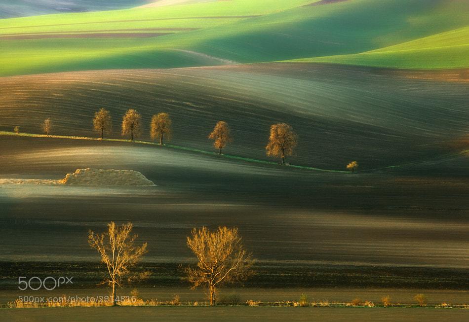 Photograph Ten... by Krzysztof Browko on 500px