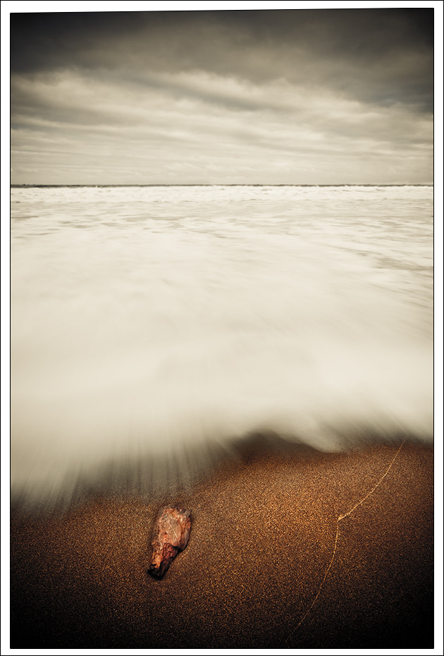 Photograph All Washed Up by Alex Scott on 500px