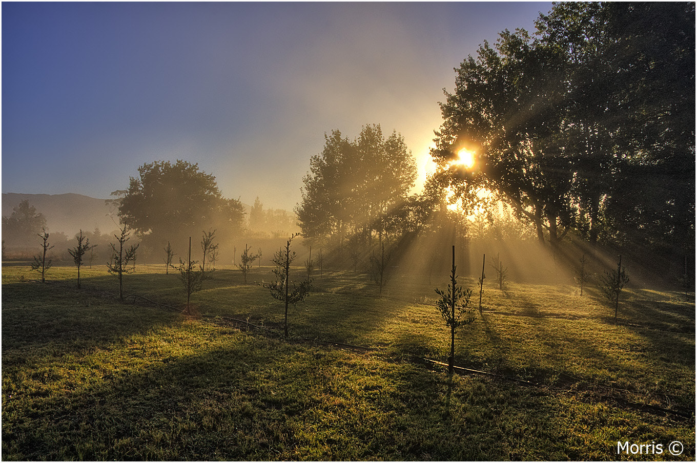 Photograph Morning Farm by Dave Morris on 500px