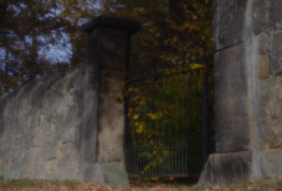 garden gate II von dirk derbaum auf 500px.com