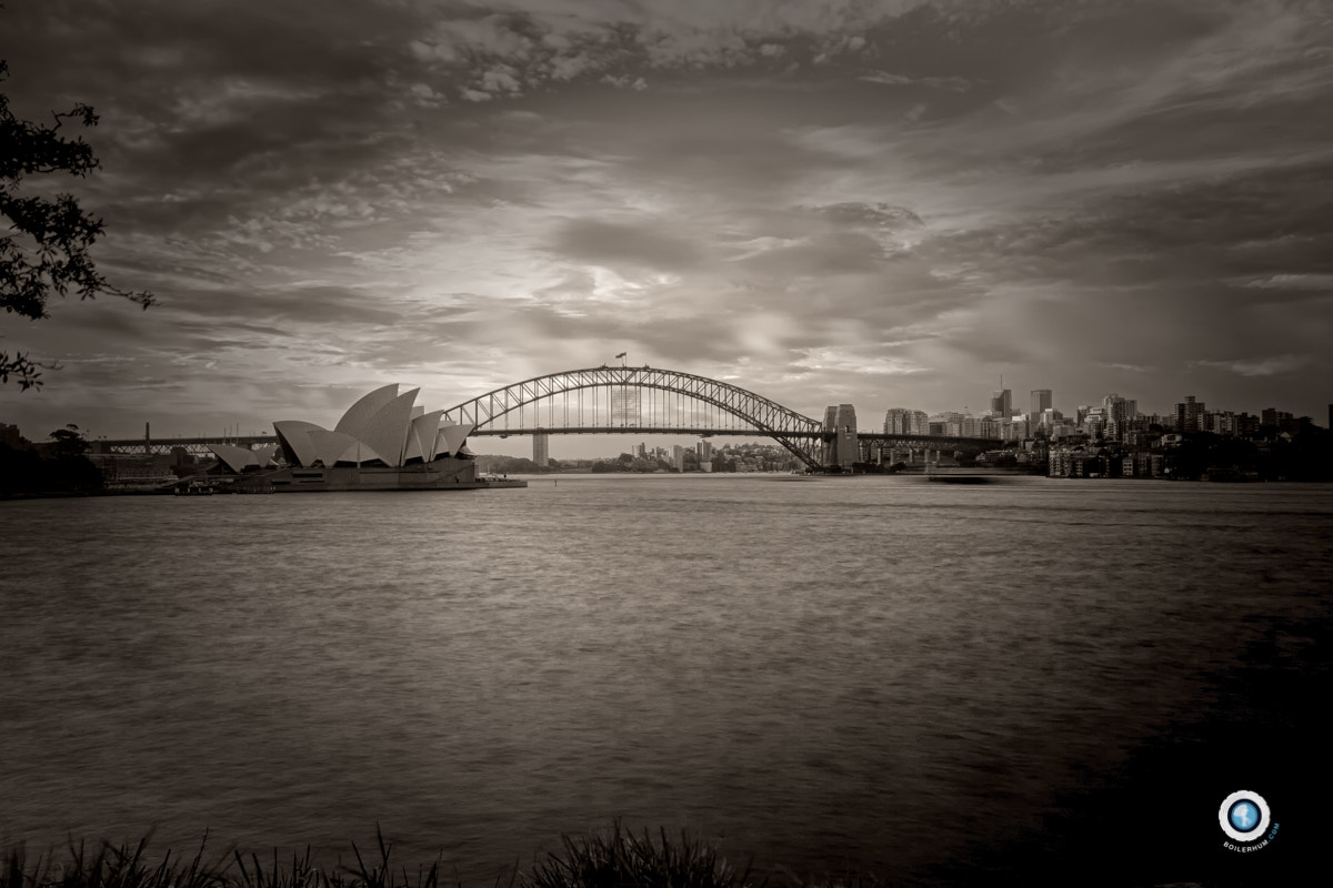 Photograph Brown Sydney by Romain Boileux on 500px