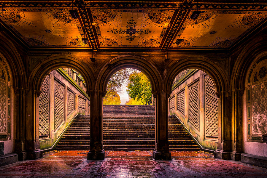 New York Central Park by Serge Ramelli on 500px.com