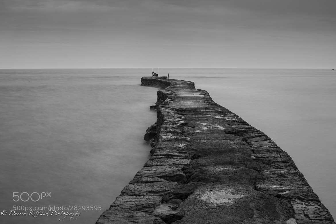 Photograph L'Étacq BW by Darren Kelland on 500px