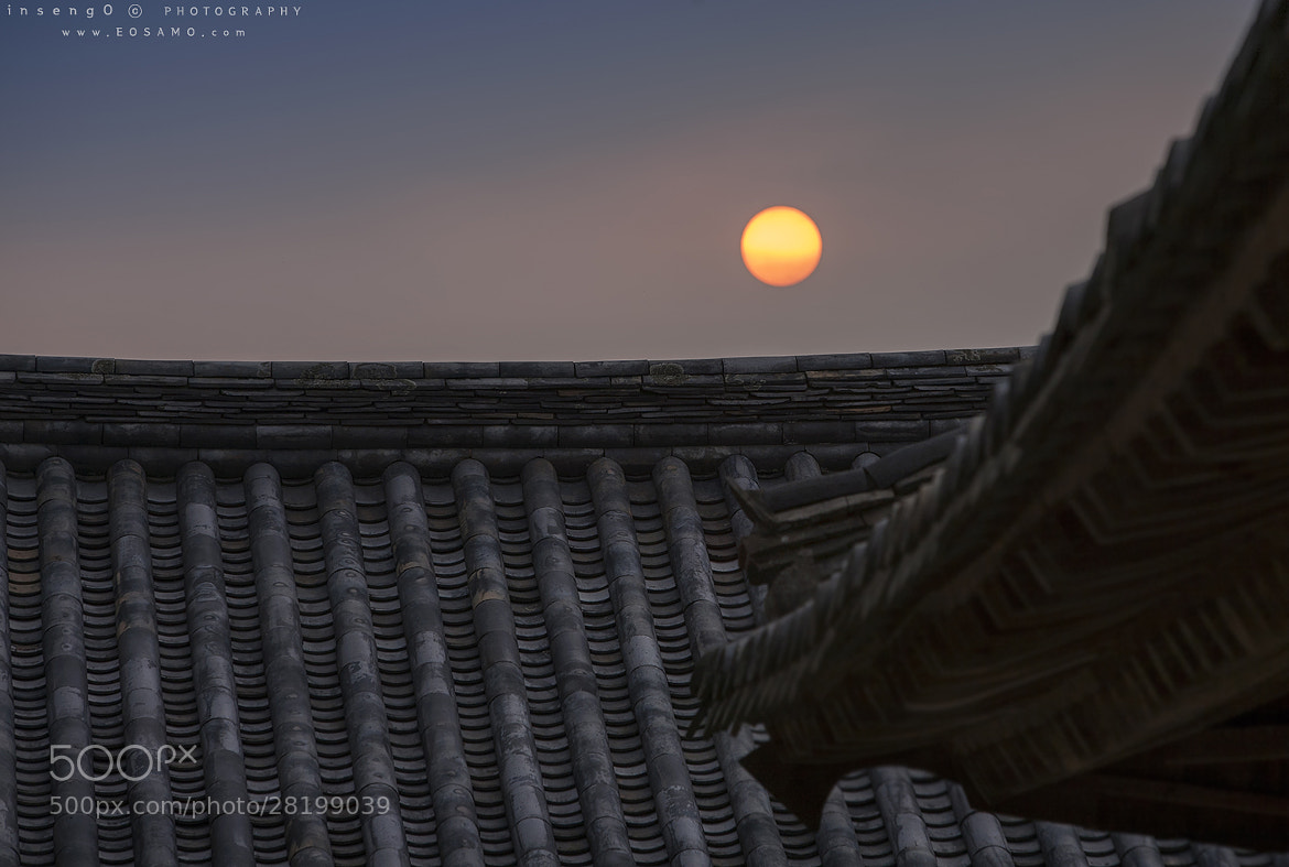 Photograph OVER THE TILED ROOF by chan-wook Kim on 500px