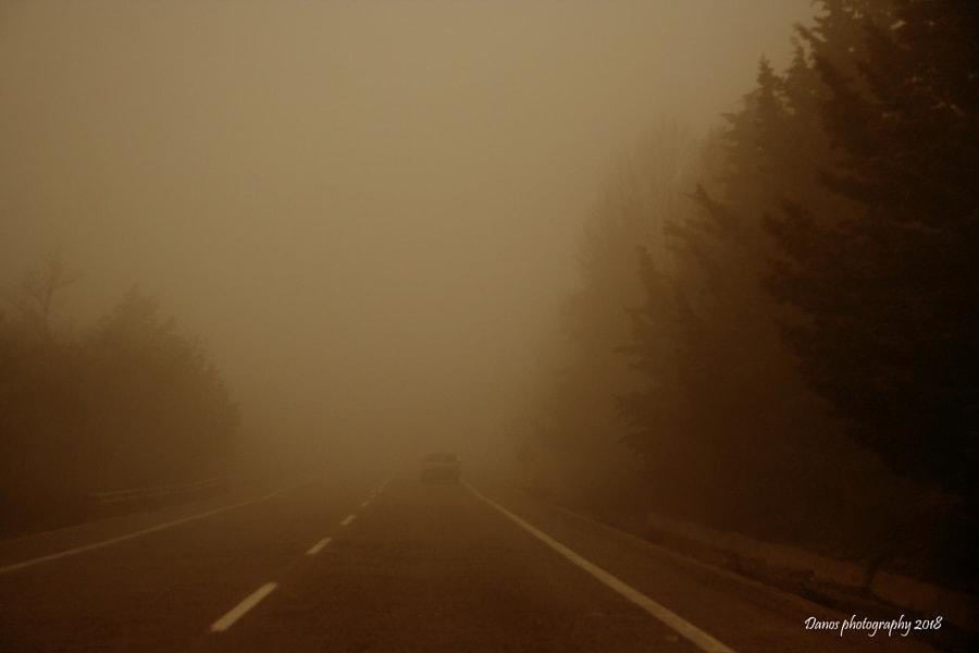 A foggy day, автор — Damianos Kounenis на 500px.com