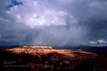 Photograph Rainfall by Bill Shapter on 500px