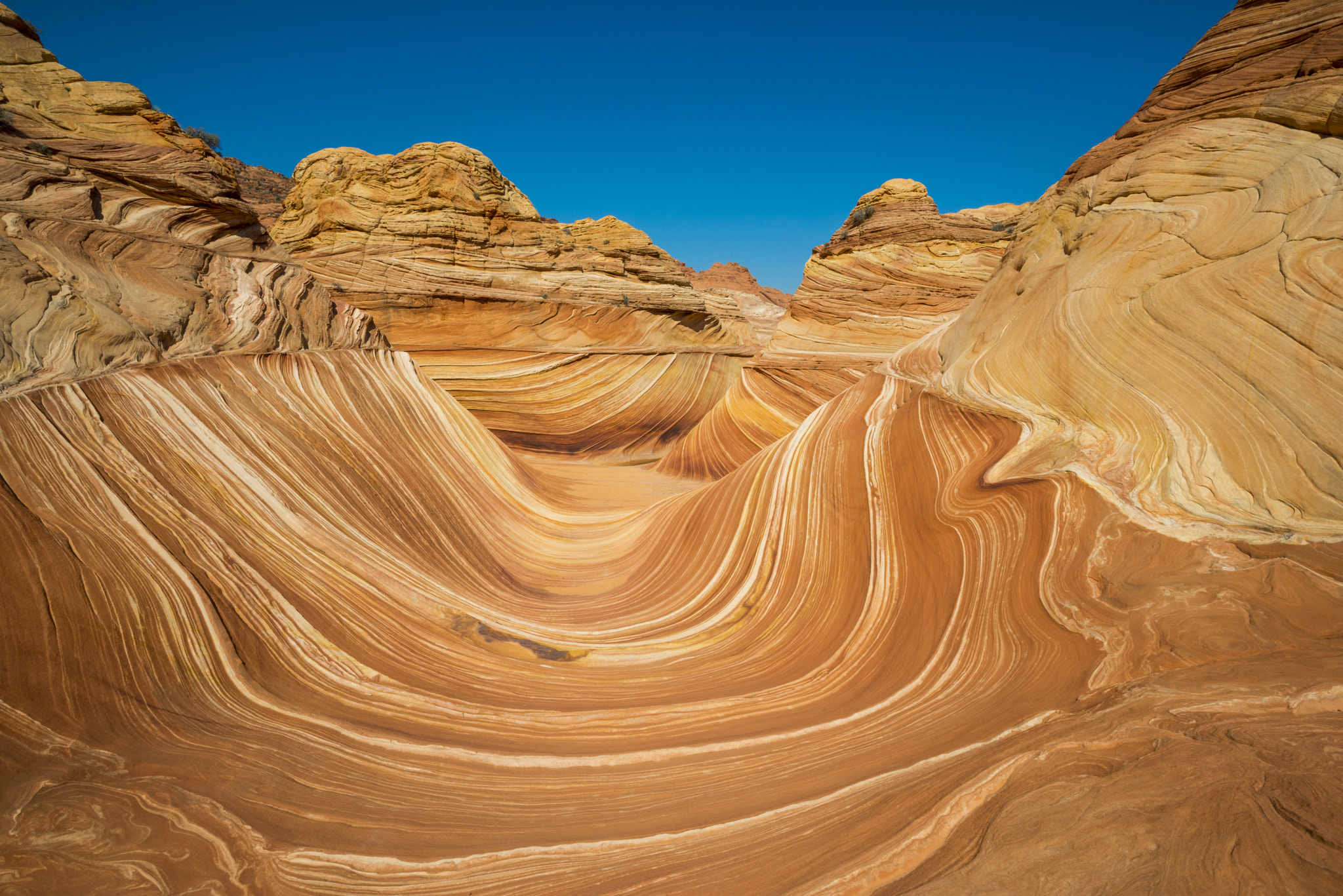 Photograph Wave - Famous rock formation in Pariah Canyon, Utah, Vermillion  by Mike Kolesnikov on 500px