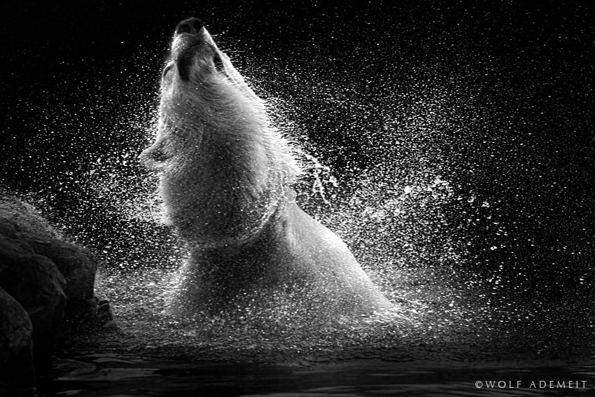Photograph splash II by Wolf Ademeit on 500px