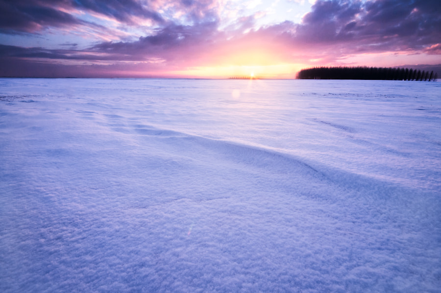 Photograph The frozen world by Sidney Bovy on 500px