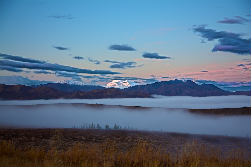 Photograph Denali In The Distance by Buck Shreck on 500px