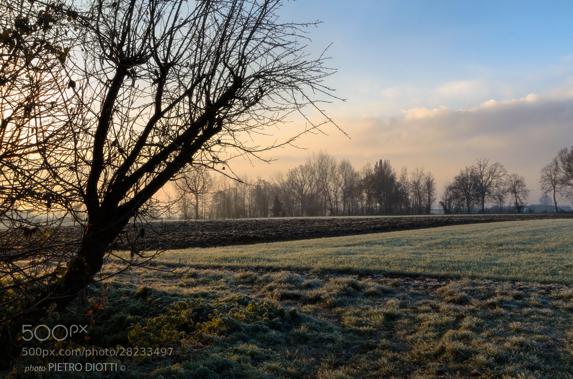 Photograph Plain 2,dawn, Cremona, Italy. by Pietro Diotti on 500px