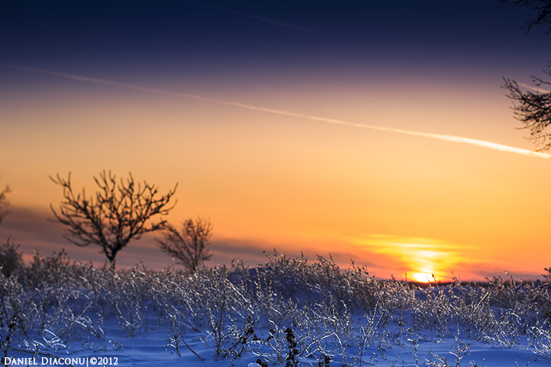 Photograph Cold times by Diaconu Daniel on 500px