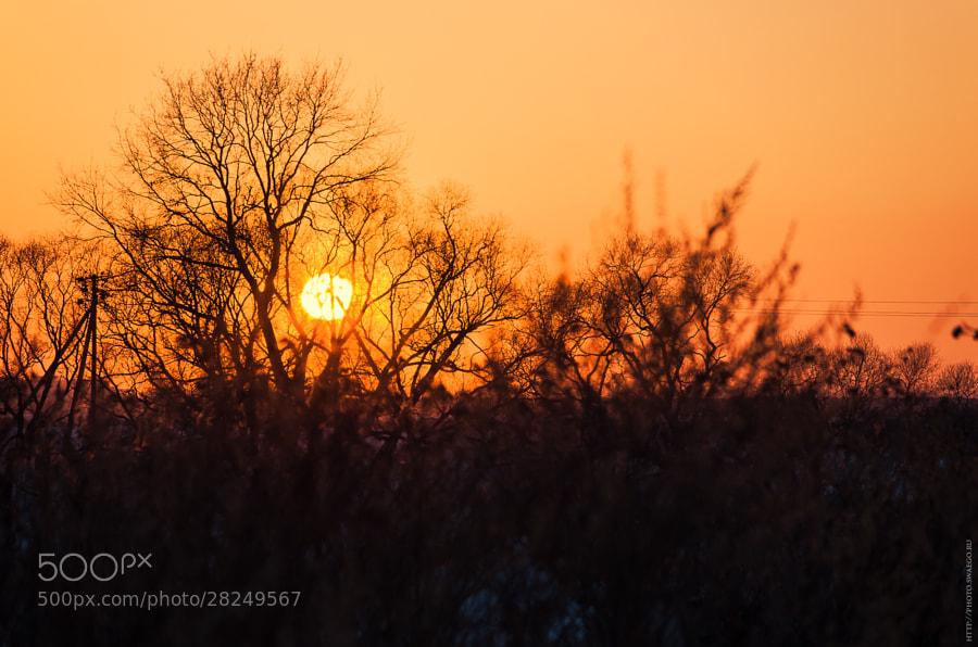 Sunset by Tolik Maltsev on 500px.com