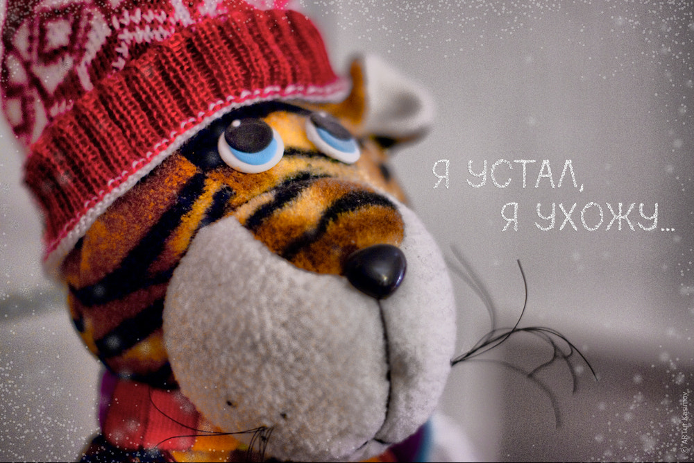 Photograph New Year's greeting card by Artur Kasimov on 500px
