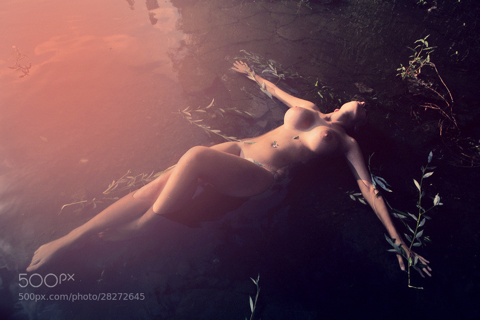 Photograph Into the water by Kiril Stanoev on 500px
