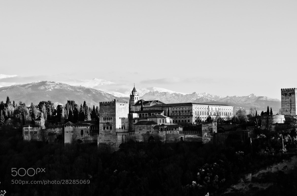 Photograph Alhambra  by Alan Nowogrodski on 500px