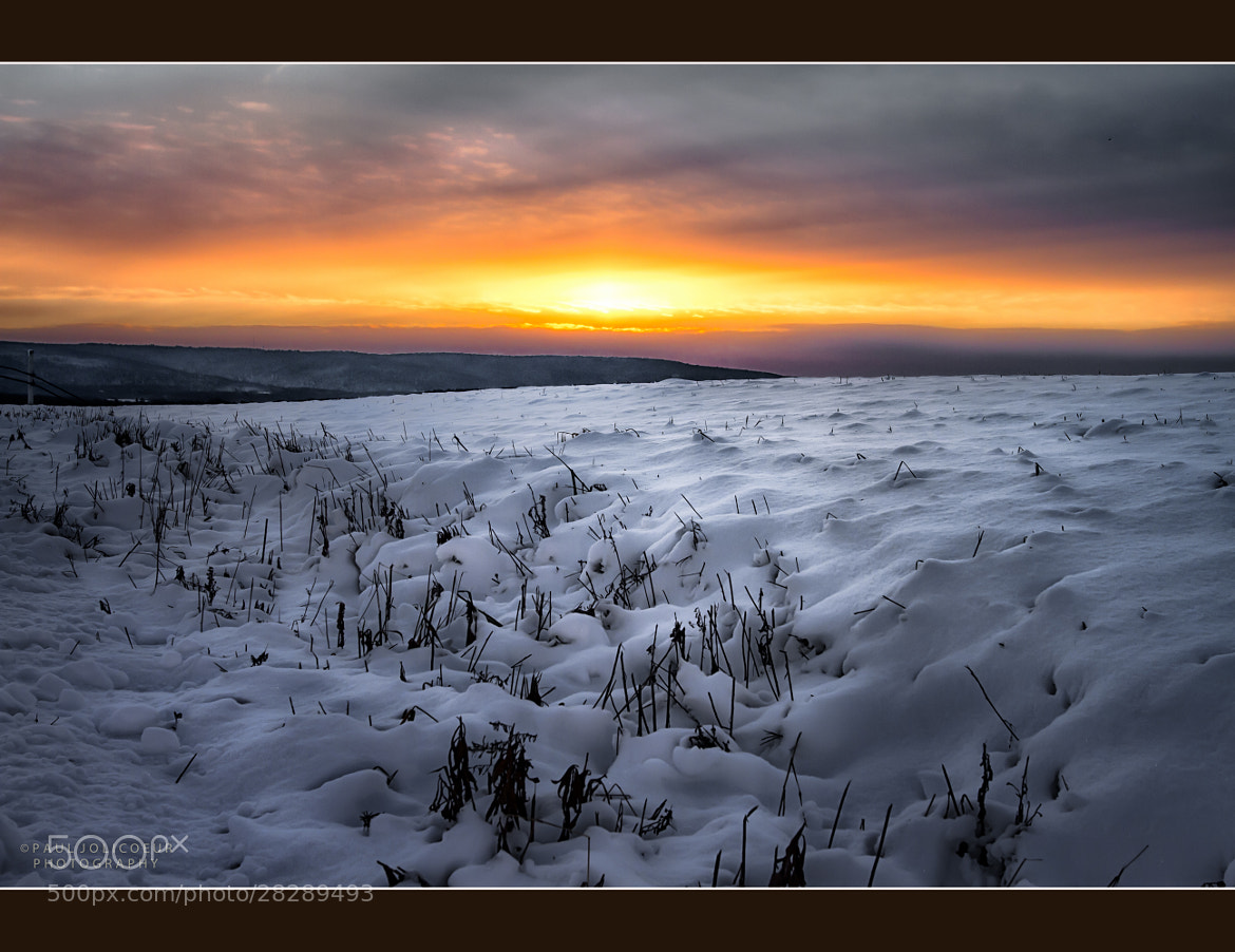 Photograph Light on the Snow by Paul Jolicoeur on 500px
