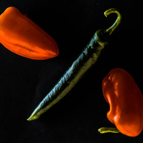 Red Hot Chilli Peppers by julian john (sandtasticdays)) on 500px.com