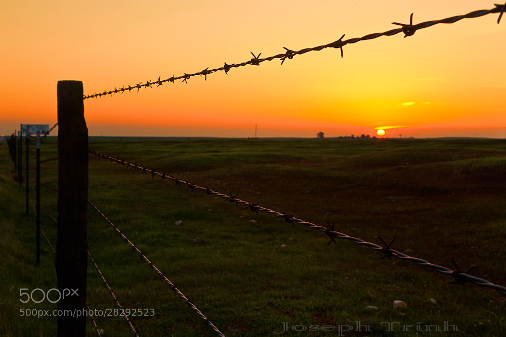 Photograph Sunset Wire by Joseph Trinh on 500px