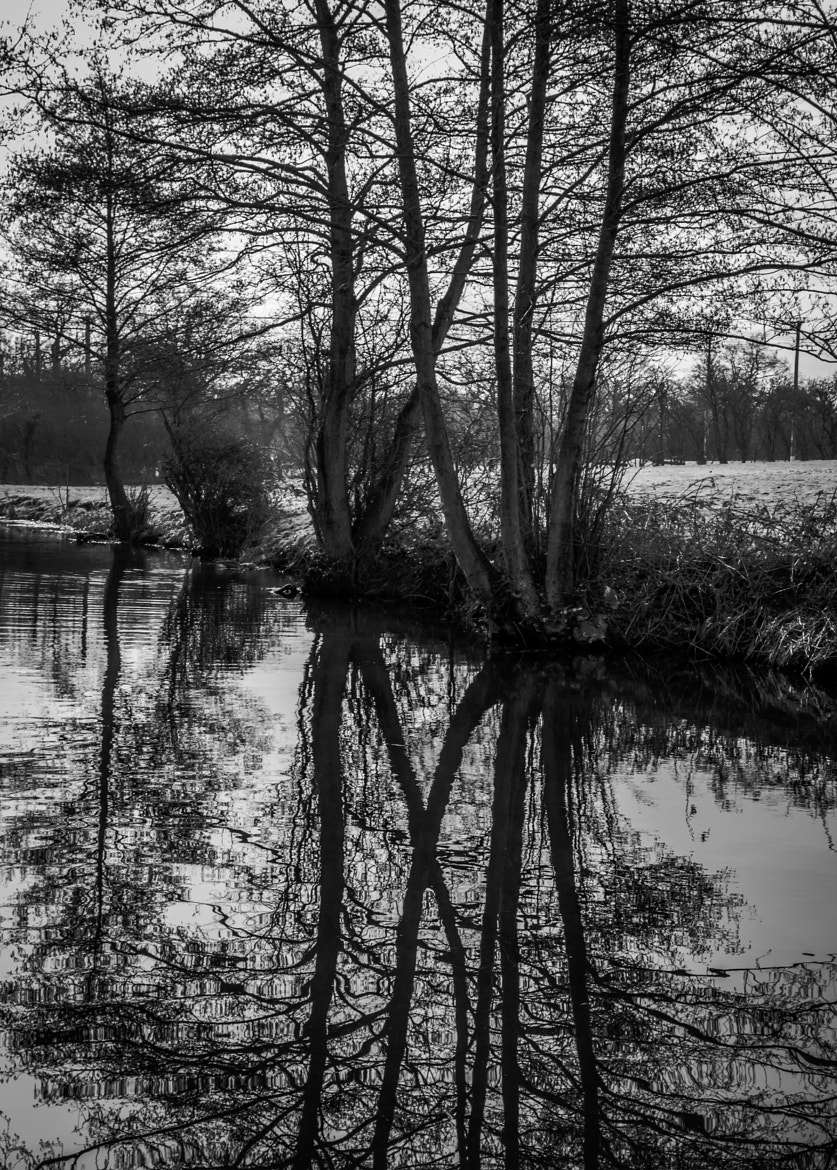 Photograph On Reflection by Dave Gregory on 500px