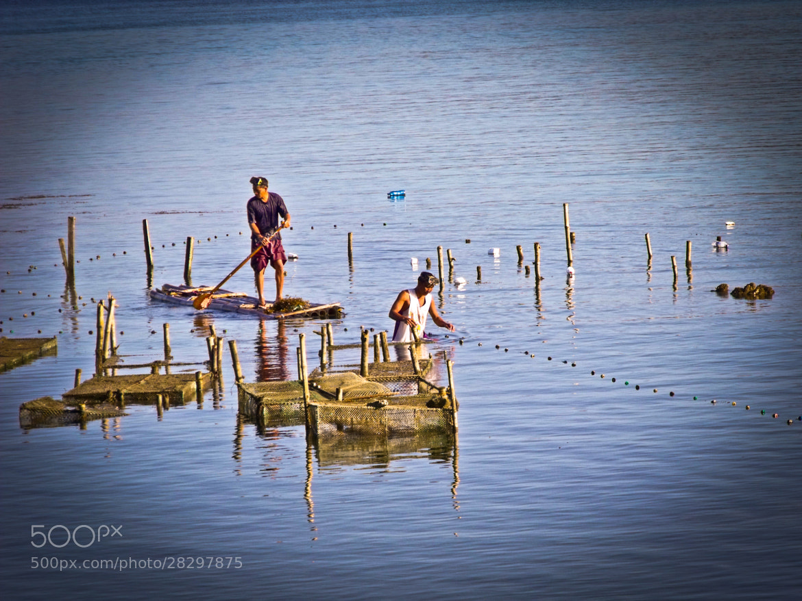 Photograph Early catch by migsnuwork on 500px