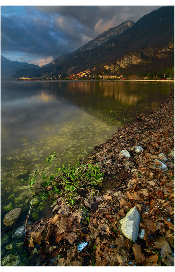 Photograph a late afternoon at the lake by FeFoPhotography  on 500px