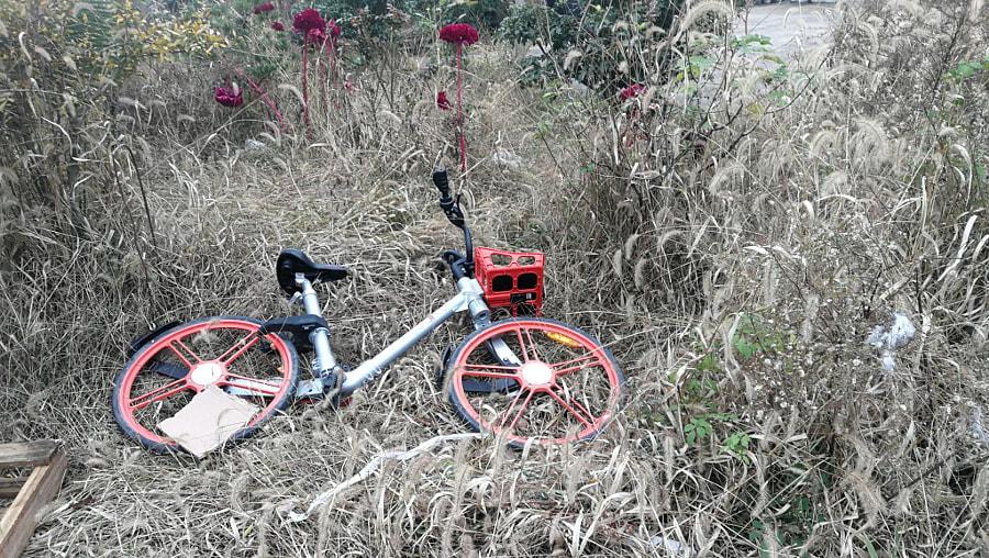 单車在这里 by 宗根林 on 500px.com