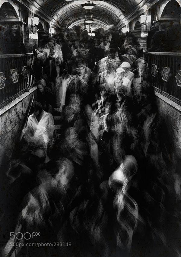 Photograph Flight before a dream... by h2o Геннадий Тараканов on 500px