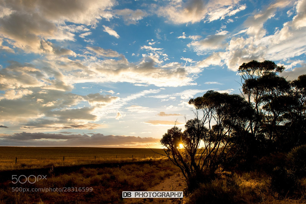 Photograph South Australia Sunset by Hans Weichselbaumer on 500px
