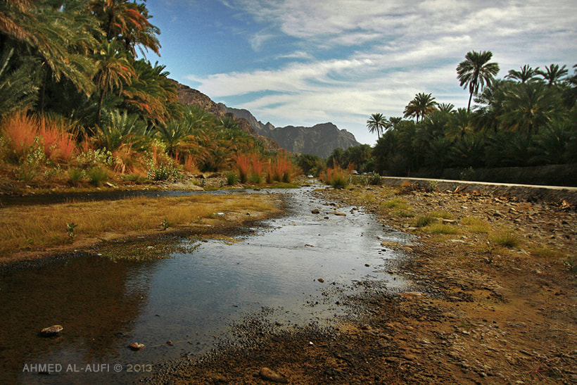 Photograph wadi dima- Oman by AHMED AL-AUFI on 500px
