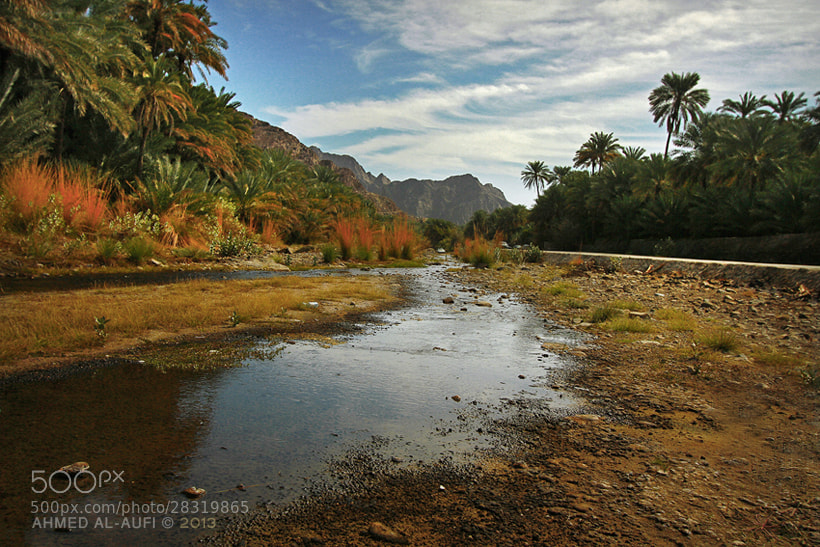Photograph wadi dima- Oman by AHMED AL-AUFI on 500px