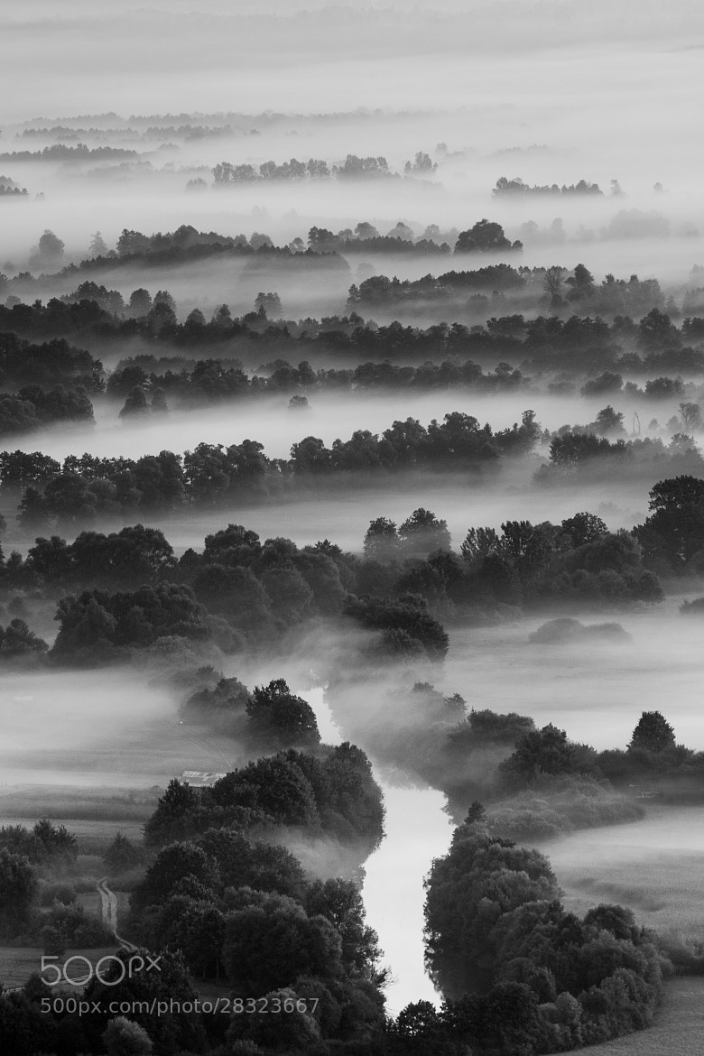 Photograph River mist by Andrej Štojs on 500px