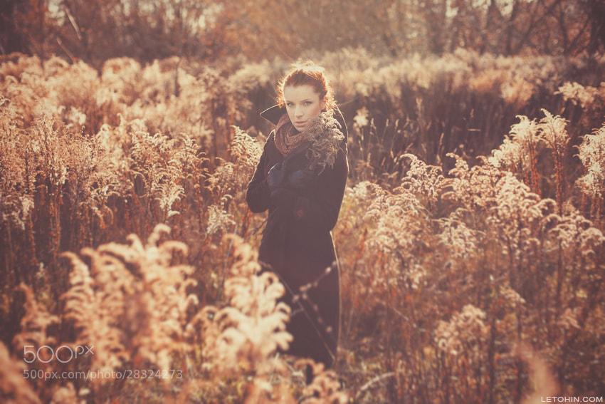 Photograph Untitled by Иван  Летохин on 500px