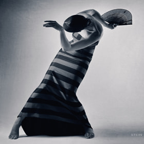 Untitled by Vadim Stein (stein) on 500px.com